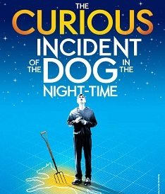 Curious Incident New
