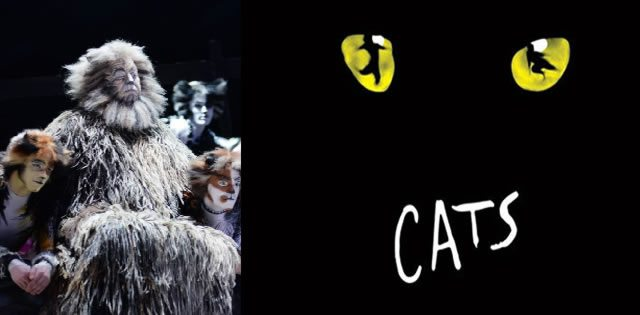 Cats Musical Ending