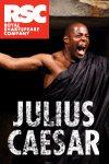 RSC_Julius 100x150