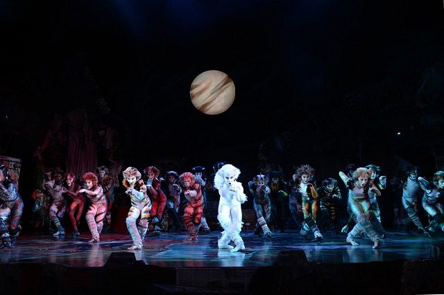 Cats - Review Shot 1