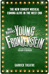 Young-Frankenstein_Small