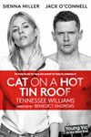 Cat-on-a-Hot-Tin-Roof_Small