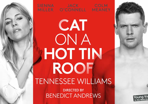 Cat-on-a-Roof_OT