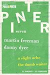 pinter-seven-small
