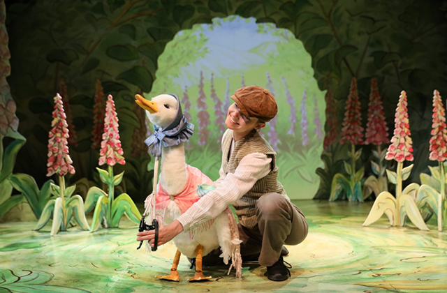 where-is-peter-rabbit-goose